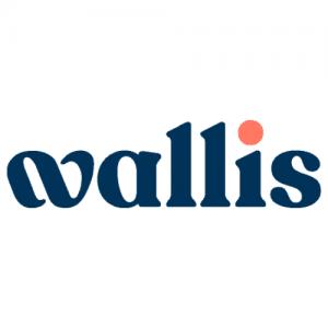 Logo Wallis GmbH
